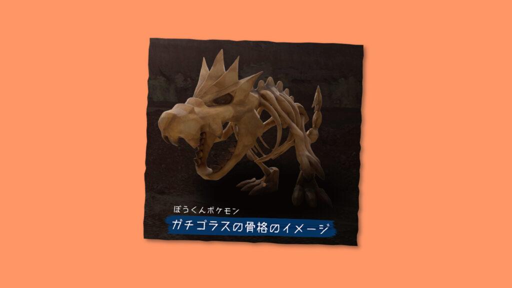 Pokémon Fossil Museum, Tyrantum, Fossil